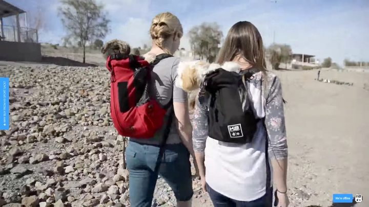 two ladies carrying their dogs with K9 Sports backpack